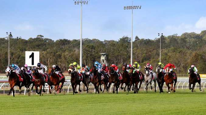Horse scratched from Coast races after stable raid