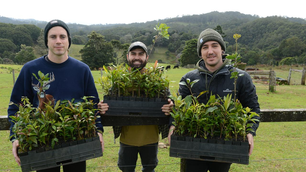 Jake Taylor, Kyle Erich and Eavan Dall of In Hearts Wake at Cromwell Farms in Goonengerry. The band will host a tree planting at the property on Saturday, August 8 to mark the release of their fifth studio album, Kaliyuga.