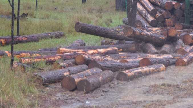 BREAKING: Log truck crashes in Gympie's west