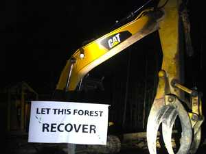 Activists shut down logging in State Forest