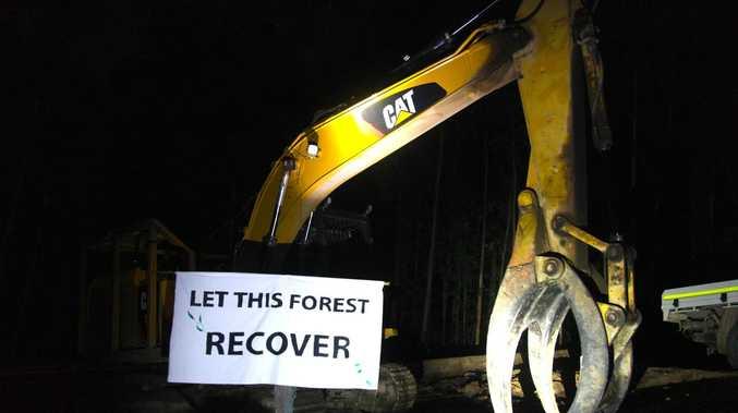 Activists shut down logging in State Forest