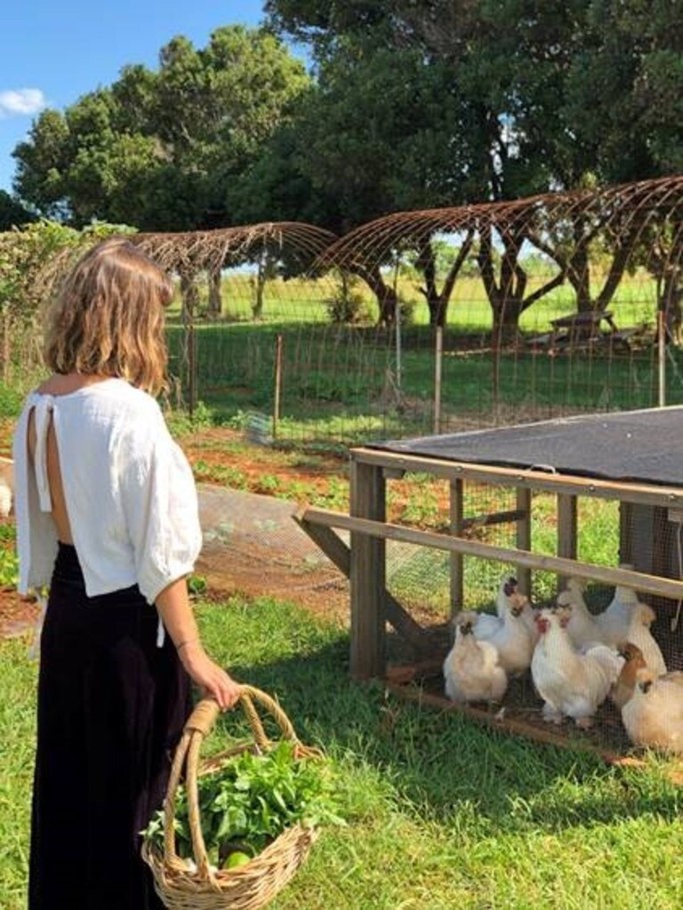 Previous recipients of a Tweed Shire Council Sustainable Agriculture Small Grant, Farm & Co., put the funding towards a project to incorporate chickens into market gardens to improve soil fertility and naturally reduce pests. A customer at Farm & Co. checking out the project.