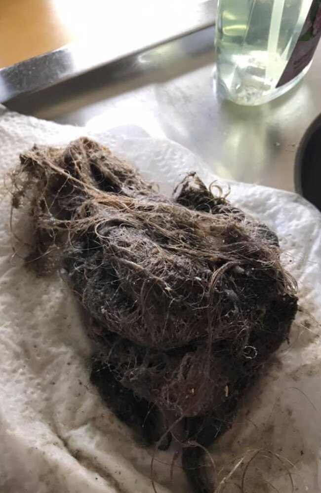 Woman's 'utterly gross' find in shower. Picture: Facebook / Mums Who Clean