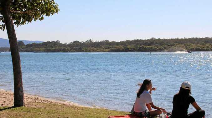 Noosa's troubled waters as river health shows rapid decline