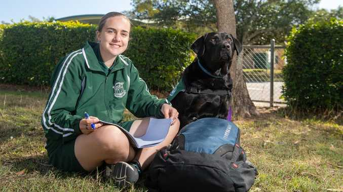 How a school turned an unwanted dog into most loved student