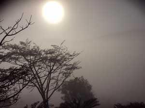A foggy morning in Bundaberg