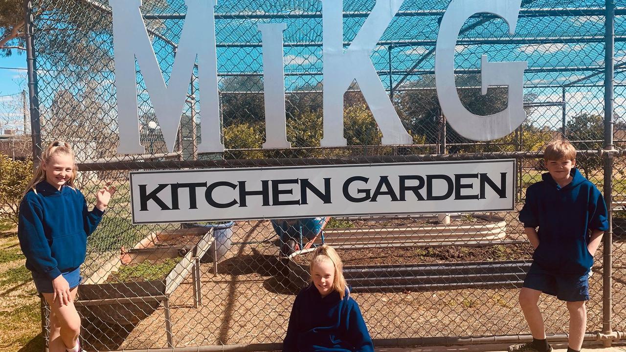 My Kitchen Garden – filled with various veggies, chooks, ducks