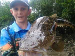MACKAY FISHING: Don't bother chucking a sickie today