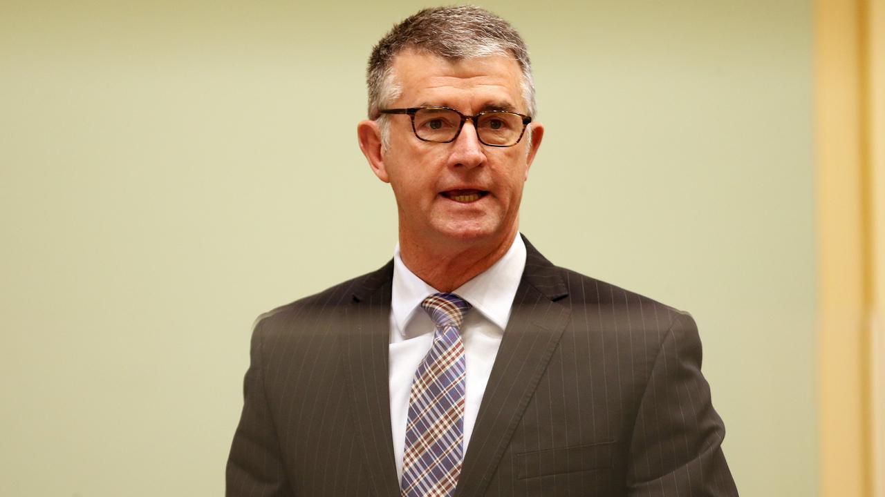 Deputy Leader of the Opposition Tim Mander speaking in Parliament. Picture: Tara Croser.