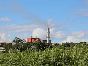 Five facts about sale of M'boro cane farms
