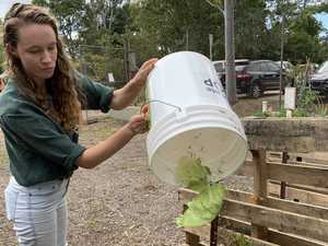 Waste not, compost more with food scrap program
