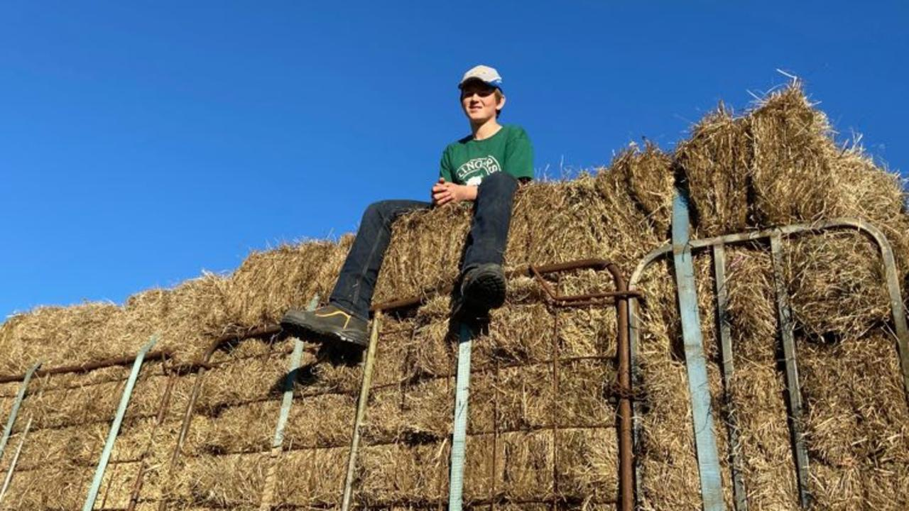 Clarence teen Nick Hay is working on trading from a paperclip to a tractor.