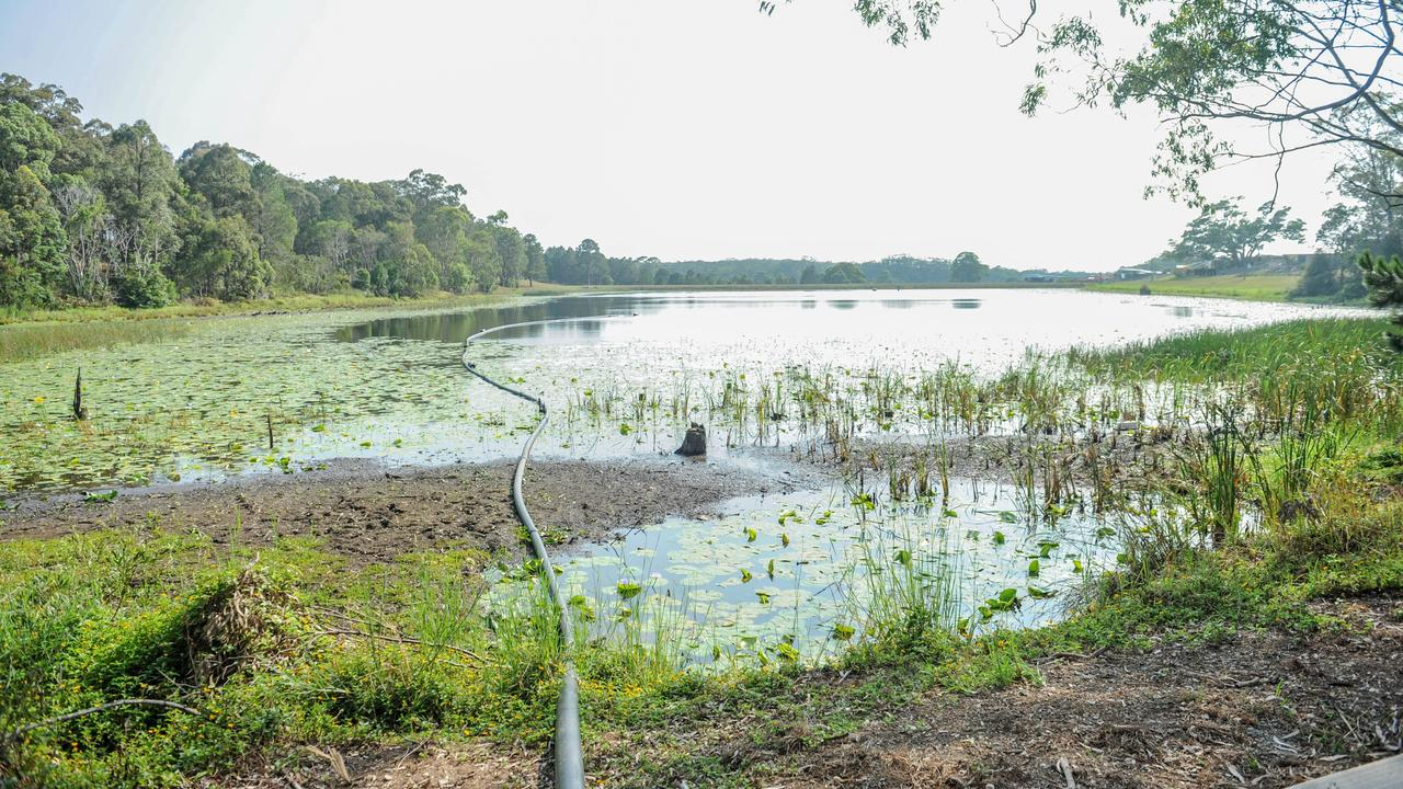 Coffs Coast Bird Observers have been coming to Woolgoolga dam for more than 16 years.
