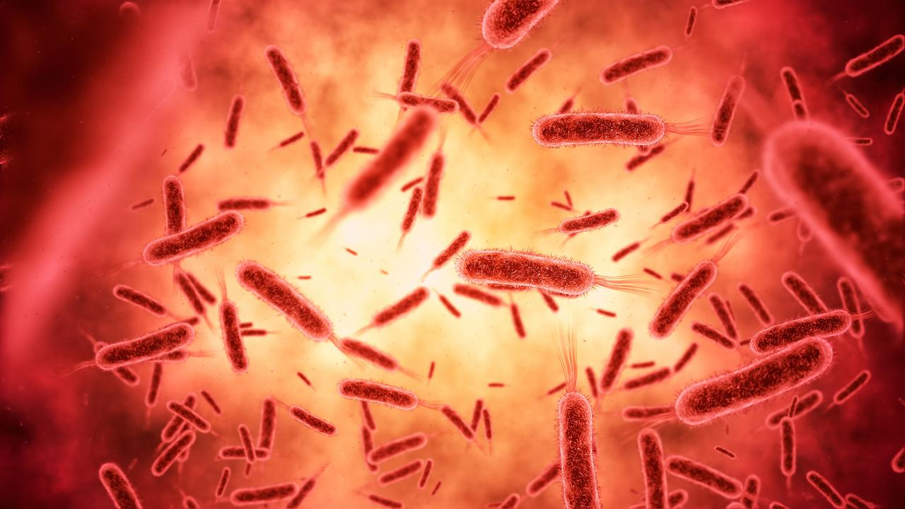 The novel bunyavirus has re-emerged in China. It comes after the novel coronavirus was discovered in China late last year. Picture: iStock