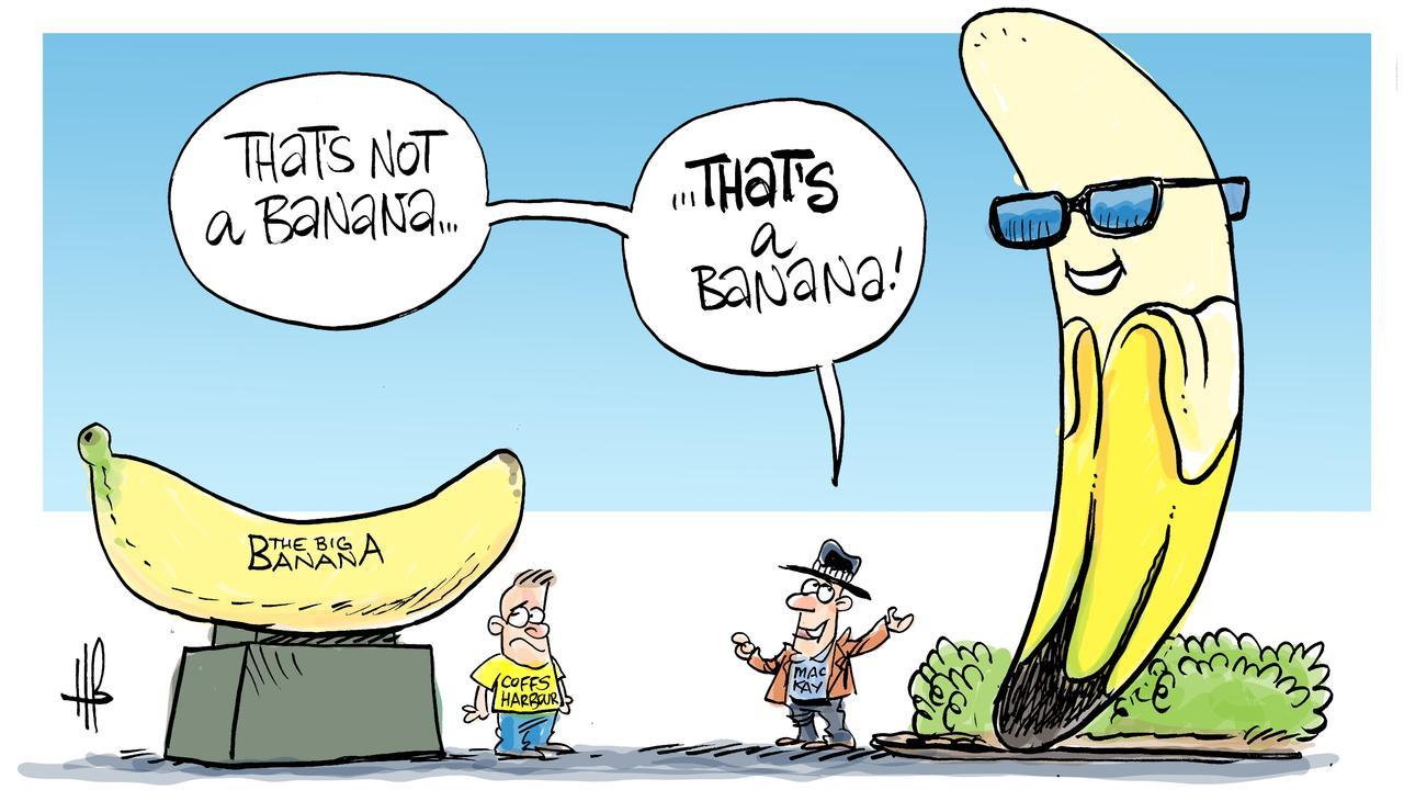 Cartoonist Harry Bruce's humorous take on Mackay's 'Ivana the Banana'.