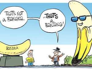 FLASHBACK: Mackay's 'Ivana the Banana' on Harbour Rd