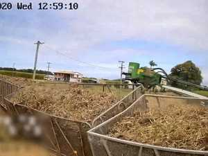 Cane train derails after crashing into harvester