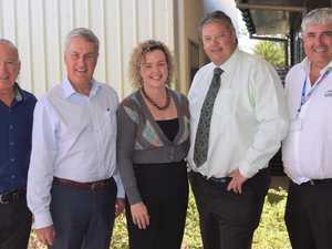 GW3 appoints Mackay businessman as director