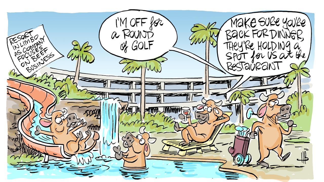 Harry's view on the Capricorn Resort development.