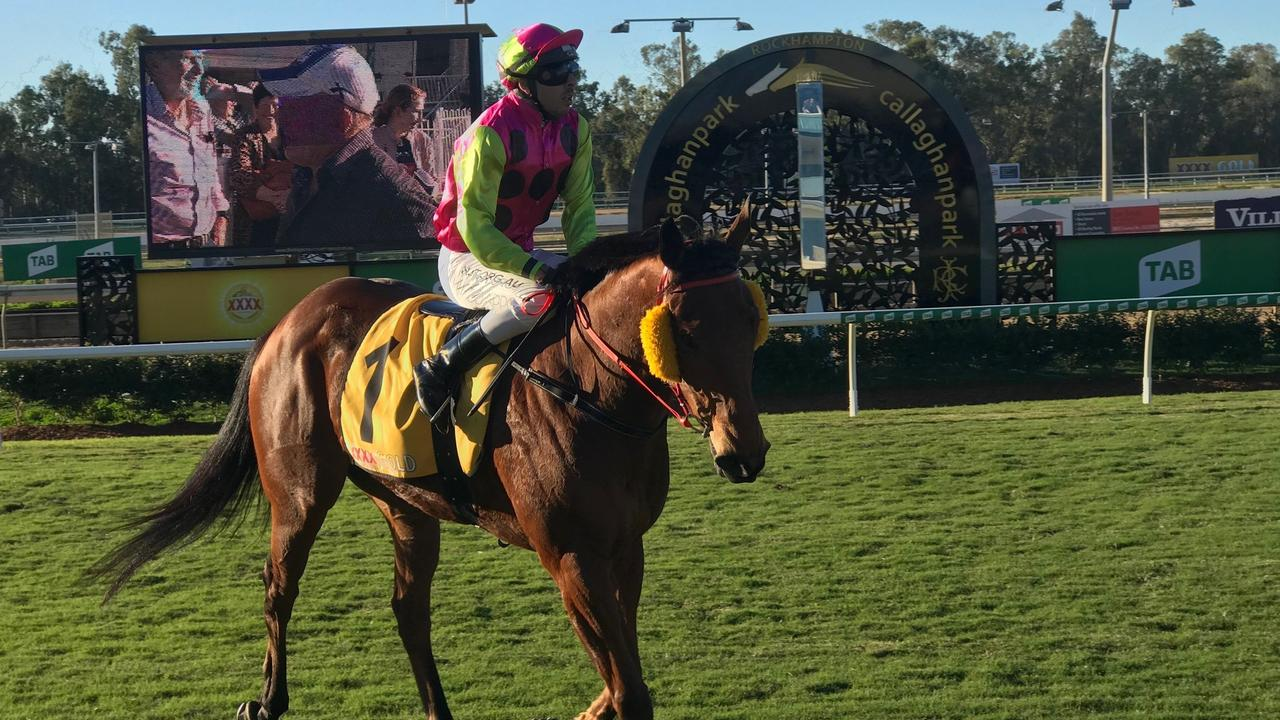 Beau-Dene Appo returns the brilliant Callaghan Park winner King Klaus to the enclosure on Tuesday.