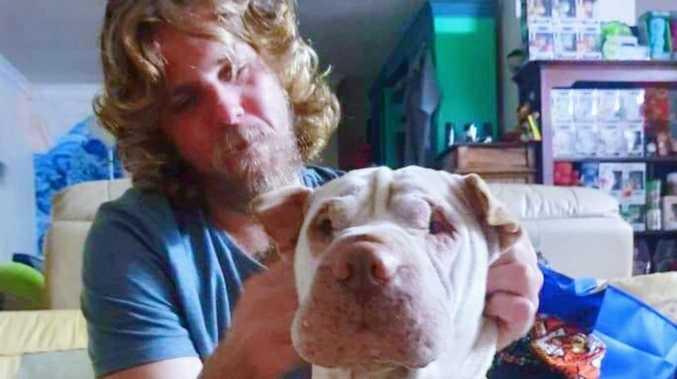 Generous stranger's massive reward to find missing dog
