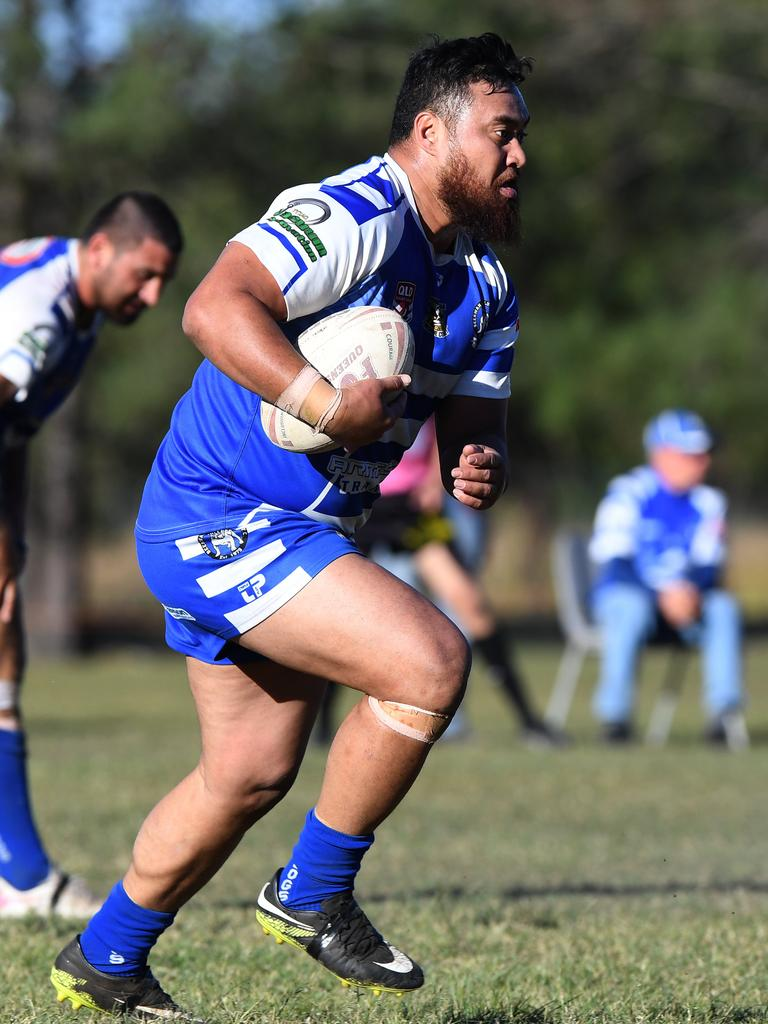 Beerwah's Taio Rio has returned for another season at the kennel.