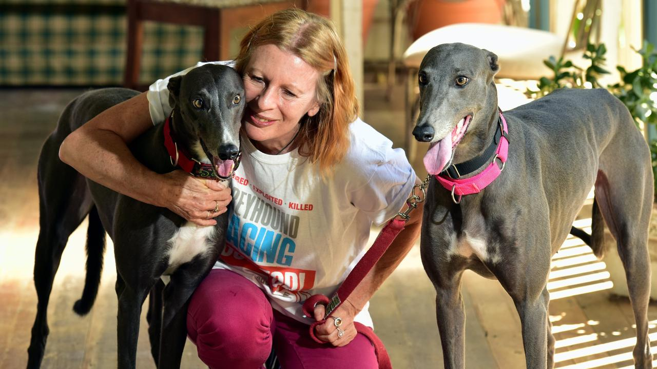 Dog trainer Faith Wild with her greyhounds Molly and Lolly at her Cooroy property. Picture: Geoff Potter