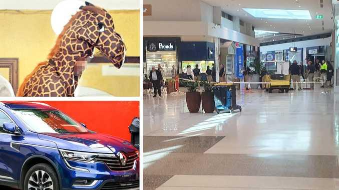Renault-driving Westfield raider's bizarre giraffe disguise