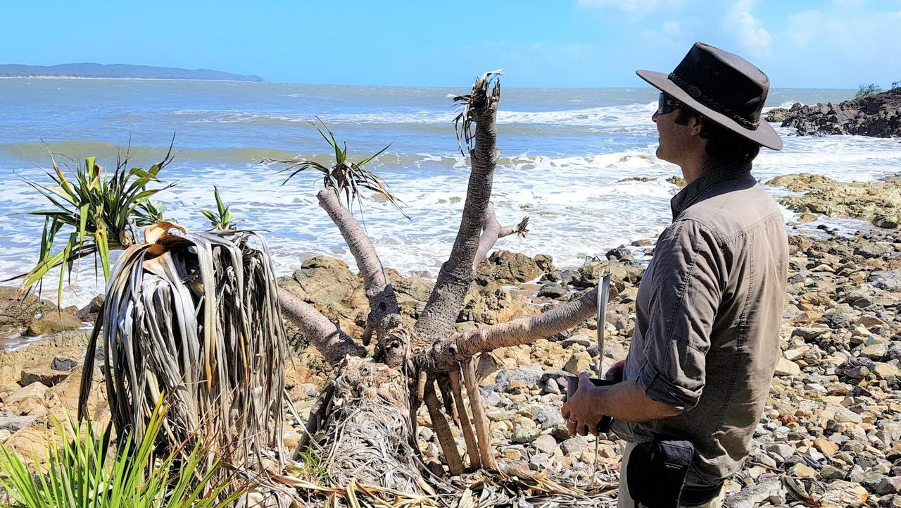 Joel Fostin is a man on a mission to preserve the pandanus for ourselves and our wildlife.