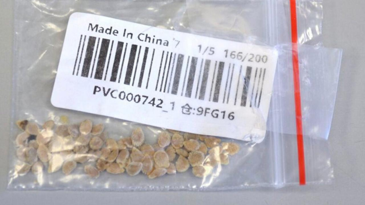 The US Department of Agriculture is warning people to watch out for unsolicited packages of seeds shipped from China.