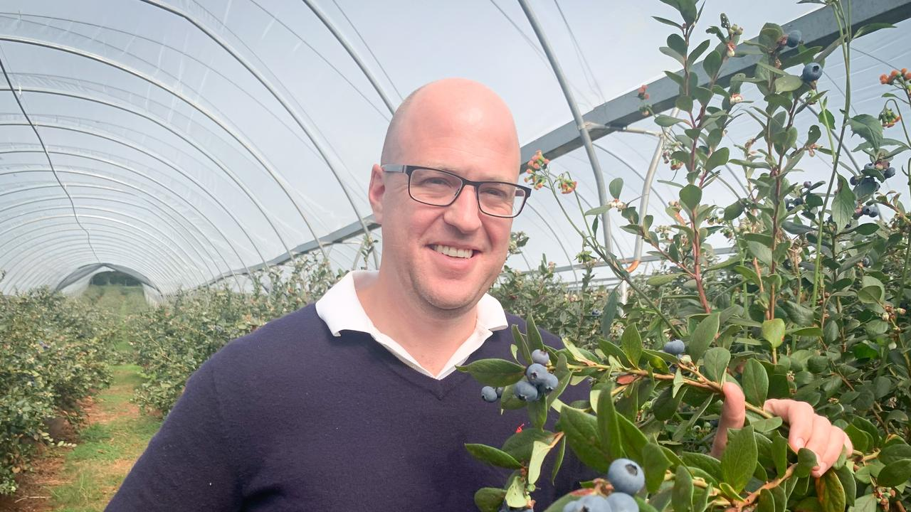 Mountain Blue managing director Andrew Bell at one of their farms.