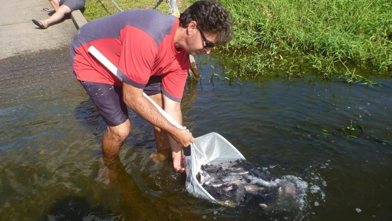 Mackay Area Fish Stocking Association member Matt Tratt releasing fingerlings into the dam. Picture: Contributed