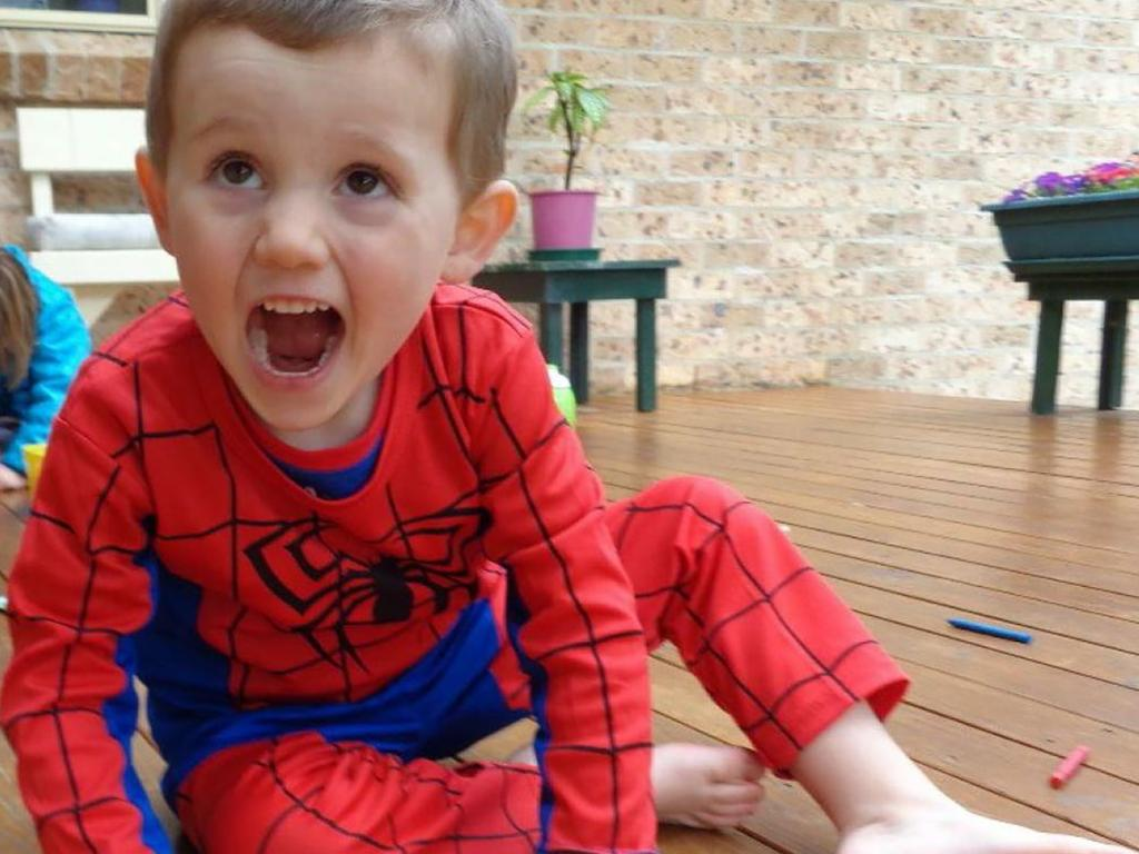 William Tyrrell was playing in his Spider-Man suit when he disappeared.