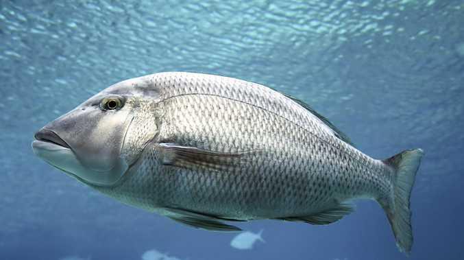 Man dies in freak fishing accident