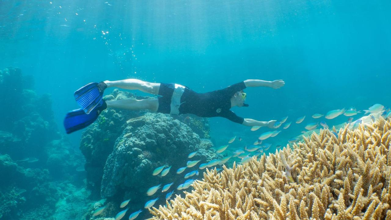 Pro cyclists swap bikes for snorkels on Great Barrier Reef. Photo: Calypso Reef Imagery