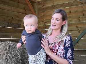 Meet the foster mum saving one calf at a time