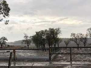 PHOTOS: Bumper rain sets farm up for 2020