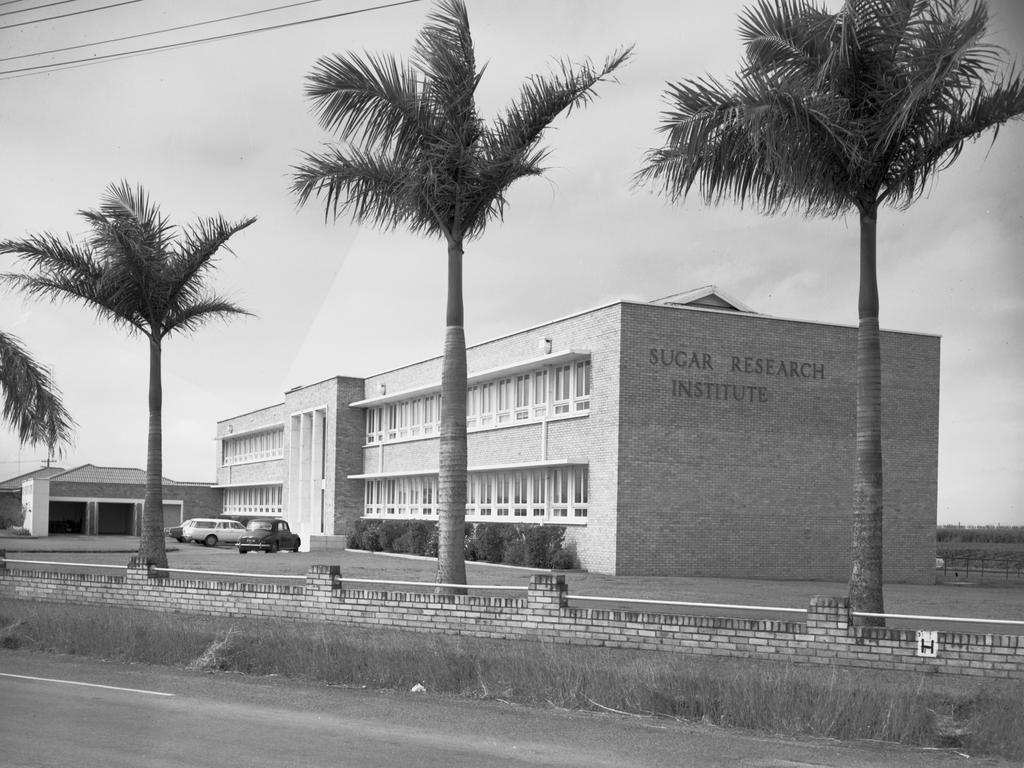 The former Sugar Research Institute on Nebo Rd in 1966. Picture: Queensland State Archives