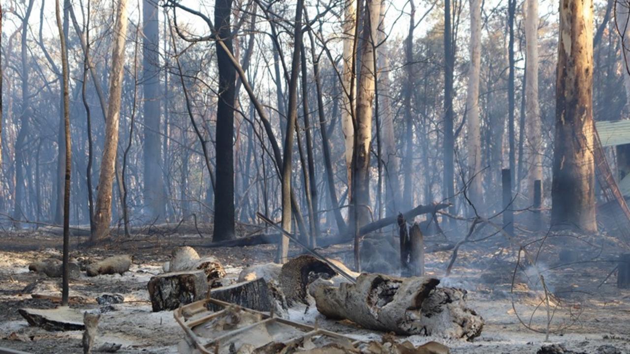A fast moving bushfire that burnt through Cooroibah last year.