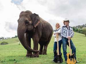 Blackbutt musicians top Australian country music charts