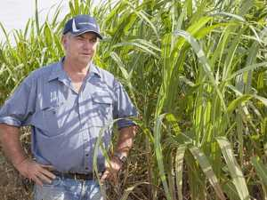 What sugar mill closure would mean for M'boro