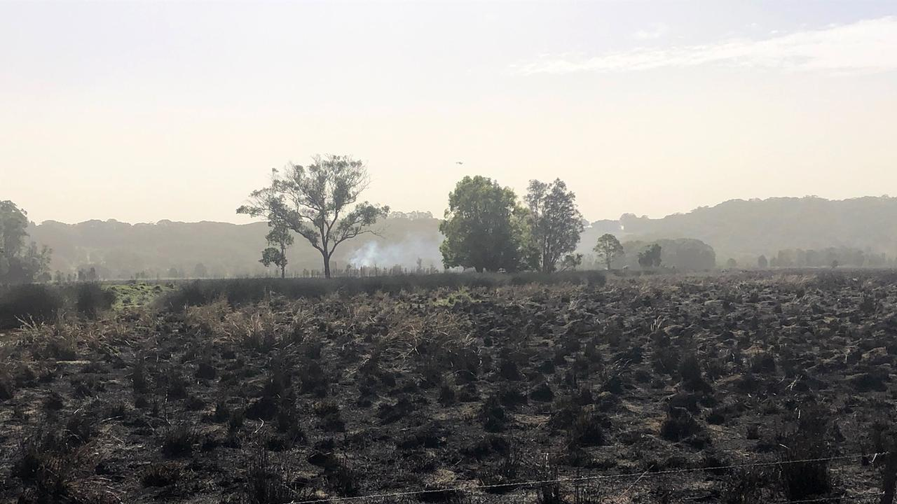 Burnt fireground at Duranbah in Tweed Shire.