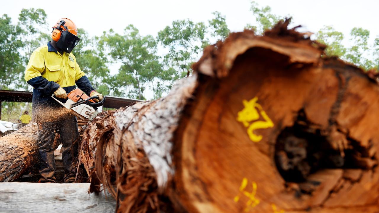 Ian Mununuggurr cuts trees at a timber mill.