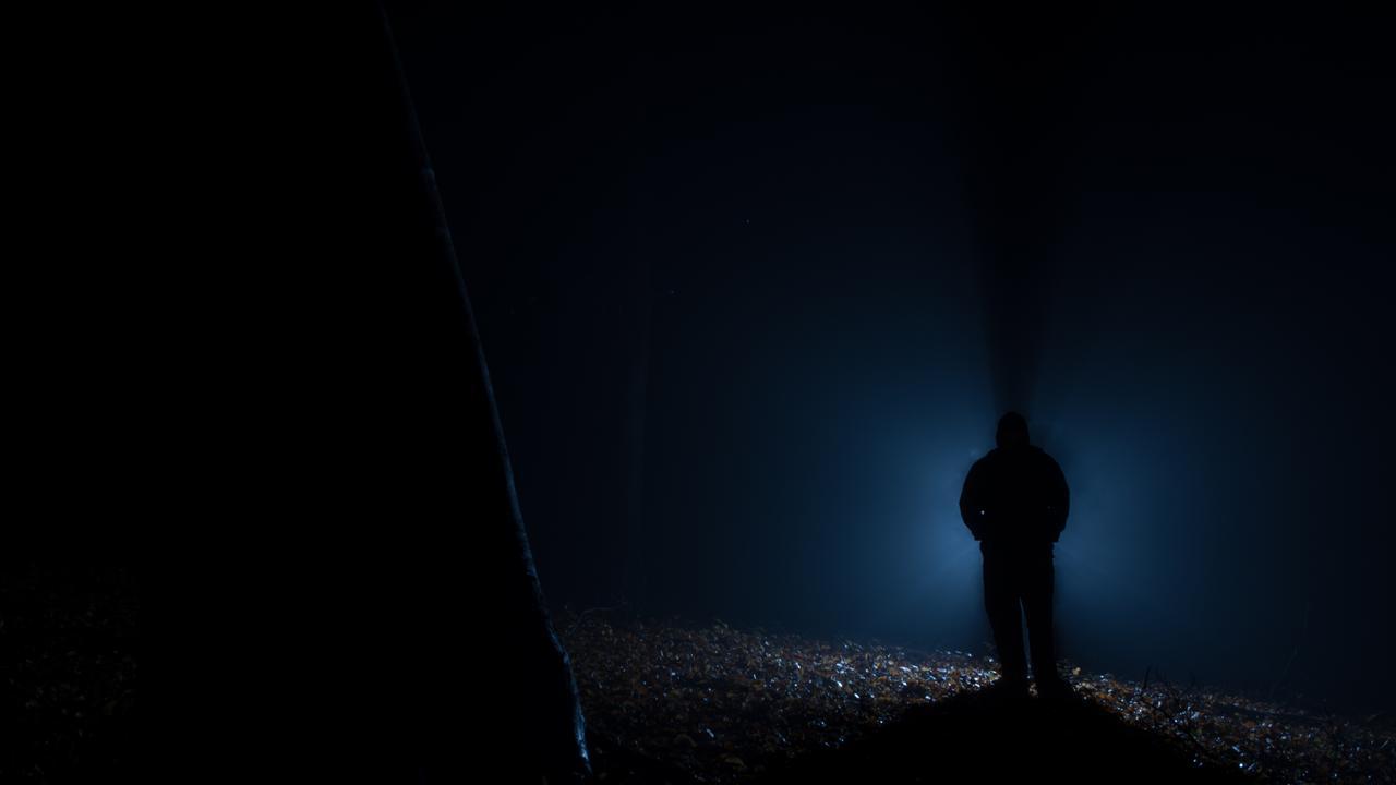 alien in the dark forest