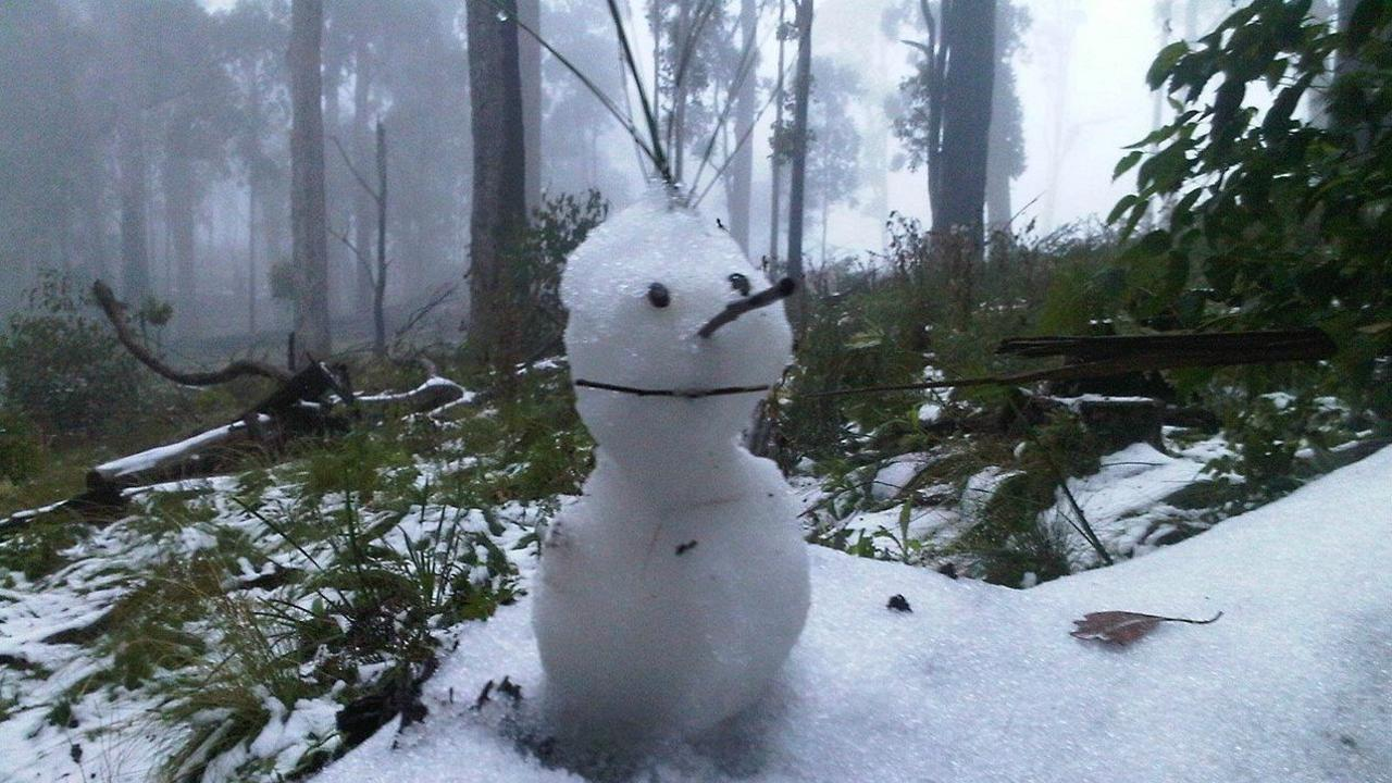 A snowman built at Barrington Tops by Phil Brown.