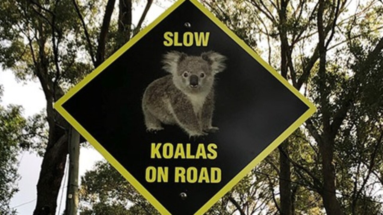 Byron Shire is taking part in a trial of new signage designed to remind drivers to watch out for wildlife, especially koalas.