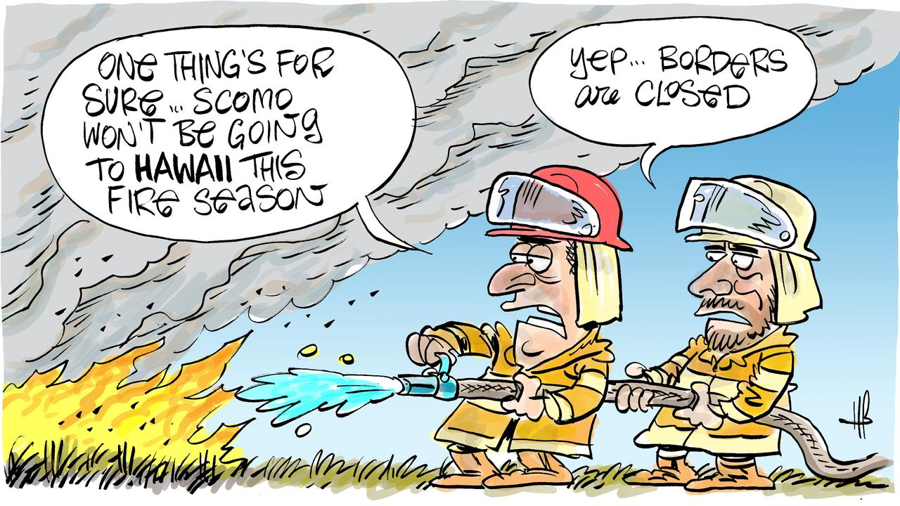 Cartoonist Harry Bruce marked the start of the 2020-21 fire season with a reflection on last summer's horror fires.