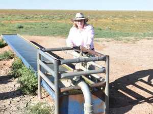 Warrego MP to review region's landscape management laws