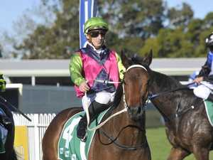 Looker, Shelton combine to Great effect in Taree