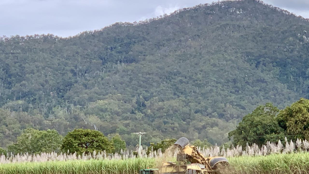Sugar cane harvesting is under way across Mackay. Picture: Rae Wilson